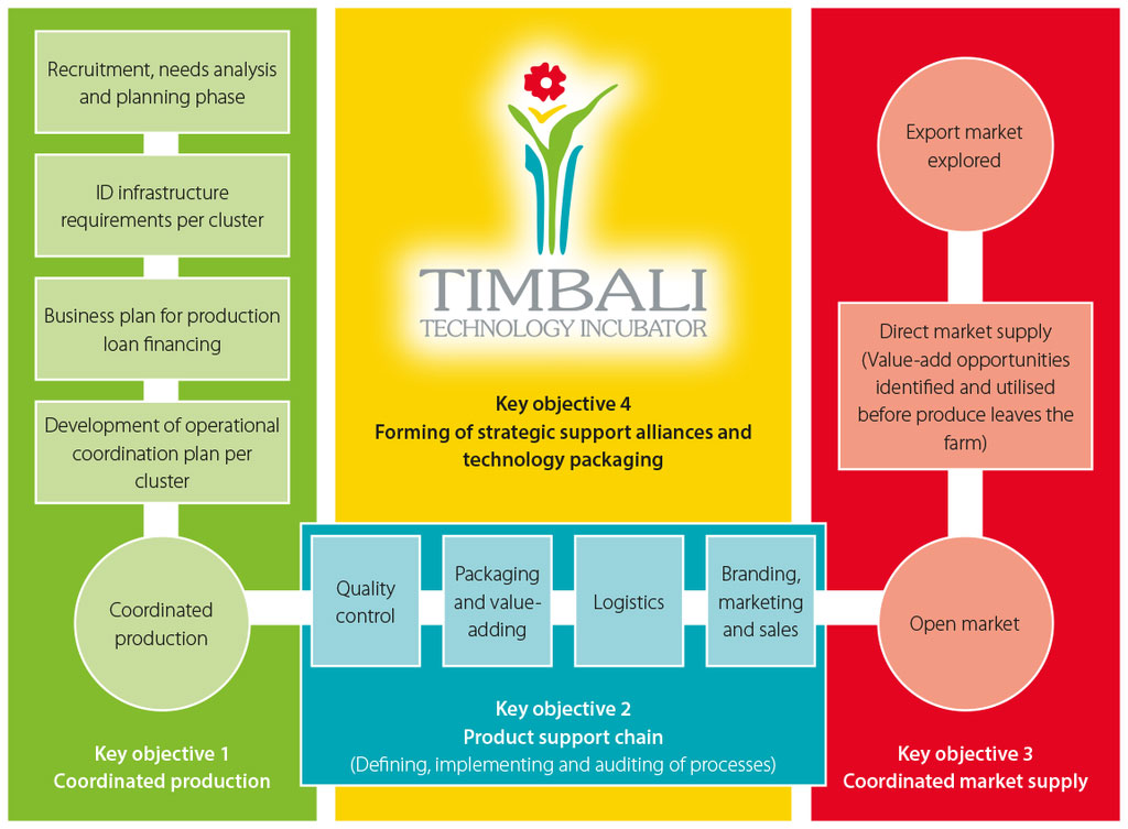 Figure 1. Schematic representation of Timbali's enabling environment to successfully link small-scale farmers to markets in order to increase sustainability